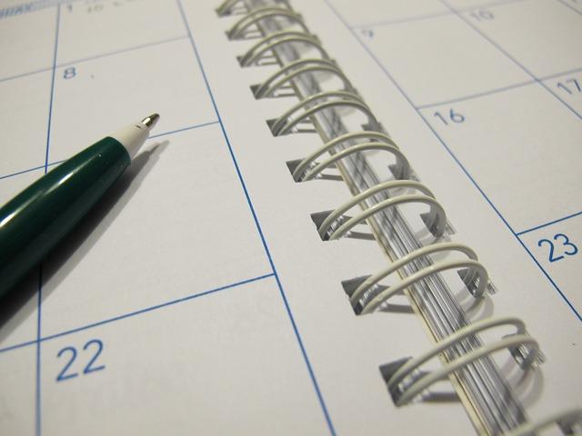 Na zdjęciu otwarty kalendarz książkowy, na nim długopis
