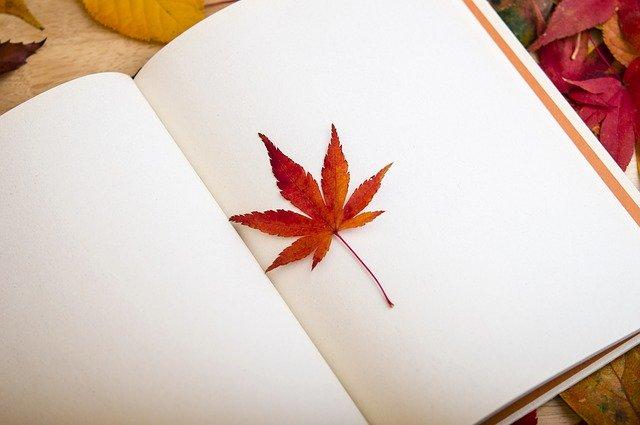 Na zdjęciu otwarty zeszyt leżący na jesiennych, kolorowych liściach. Jeden z liści leży na zeszycie.