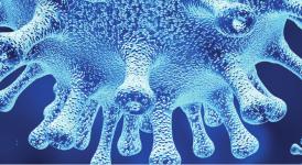 Czytaj więcej o: Materiały na temat koronawirusa